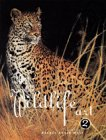 The Best of Wildlife Art 2